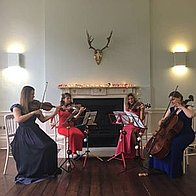 Viva La Vida Strings String Quartet