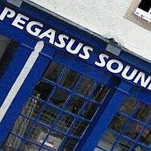 Pegasus Smoke Machine