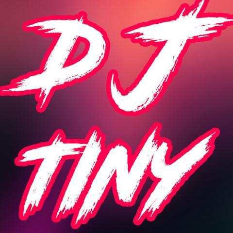 DJ Tiny - Mobile DJ Mobile Disco