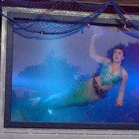 Mermaid Cove Dance Act