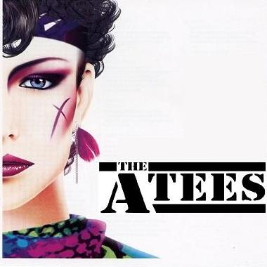 The A-Tees Live music band