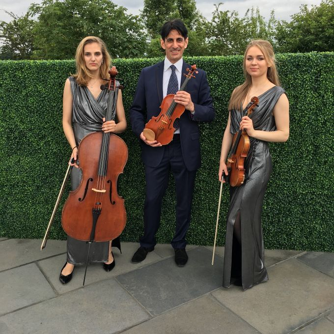 Giardino Strings - Live music band Ensemble Solo Musician  - London - Greater London photo