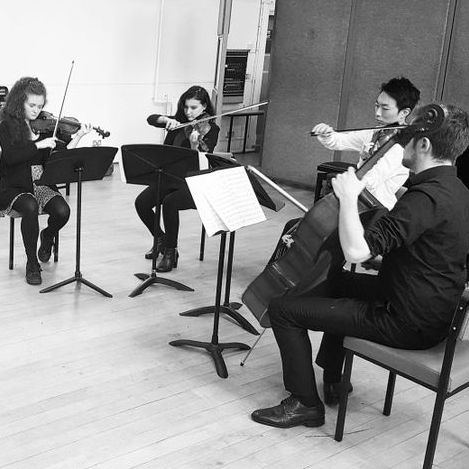 Belgard String Quartet Classical Ensemble
