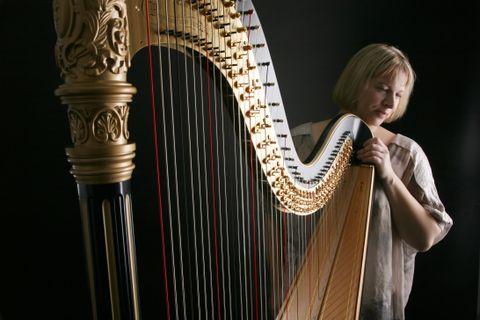 Maxine Molin Rose - Solo Musician , Lancashire,  Harpist, Lancashire