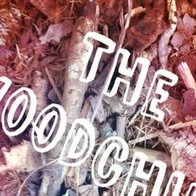 The Woodchips World Music Band