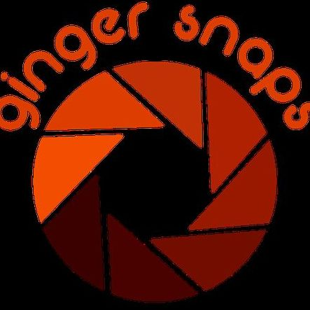 Ginger Snaps - Photo or Video Services , Canterbury,  Photo Booth, Canterbury