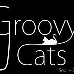 The Groovy Cats - Live music band , Sheffield,  Function & Wedding Band, Sheffield Jazz Band, Sheffield Funk band, Sheffield