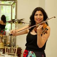 The Violin Expert Violinist