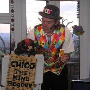 Marko Sparko Magic - Children Entertainment , Chelmsford,  Balloon Twister, Chelmsford Children's Magician, Chelmsford