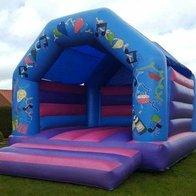 DM Inflatables & Party Services Bouncy Castle
