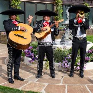 Mariachi Tequila - Live music band , London, Children Entertainment , London, World Music Band , London,  Function & Wedding Band, London Mariachi Band, London Latin & Salsa Band, London Acoustic Band, London Live Music Duo, London Festival Style Band, London Children's Music, London Alternative Band, London