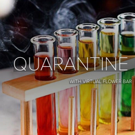 Quarantine Party Bar Staff