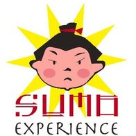 Sumo Experience Parties Games and Activities
