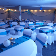 Parties Complete Chair Covers