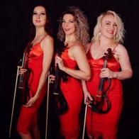 Natalya Strings Classical Orchestra