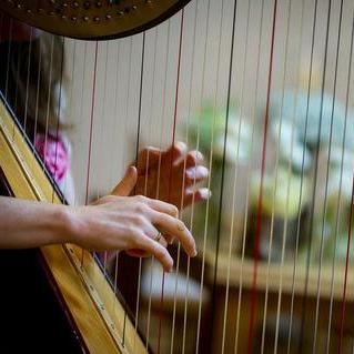 The Wedding Harpist Solo Musician