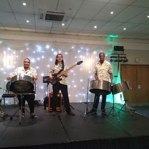Carribbean Regals Steelband Function & Wedding Music Band