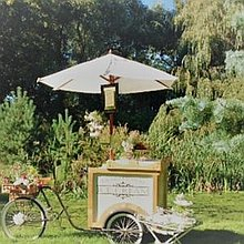LoveTagEvents Ice Cream Cart