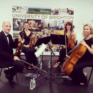 Brighton String Quartet Ensemble