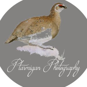 Ptarmigan Photography Portrait Photographer
