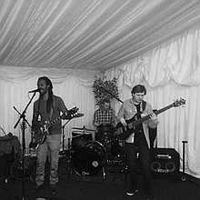 LeRoy And The Euphonics Acoustic Band