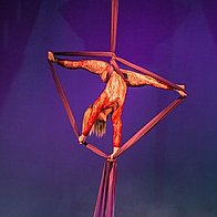 Stage Invaders Entertainments Aerialist