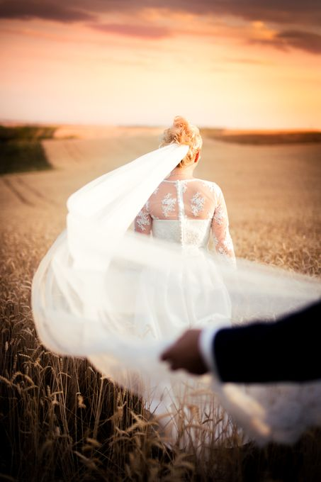 Katarina Nichol Photography - Photo or Video Services  - Croydon - Surrey photo