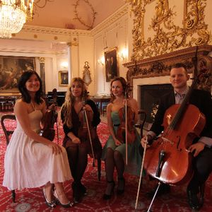 Niche London Strings Harpist