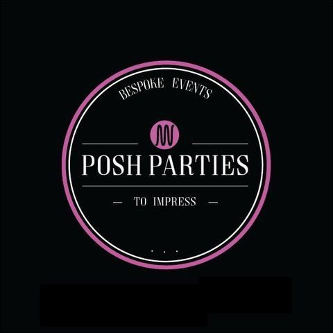 Posh Parties UK Smoke Machine