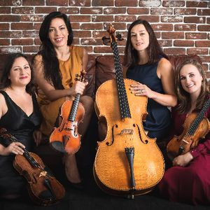 Accordi String Quartet & Trio Classical Ensemble
