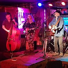 Bayston Hillbillies Folk Band