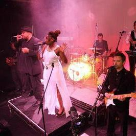 ALIBI Function & Wedding Music Band