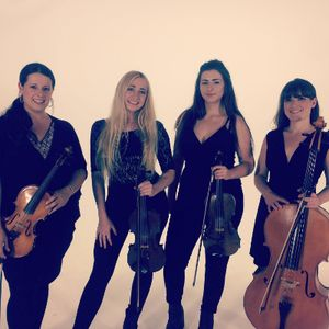 Echo String Quartet Classical Ensemble
