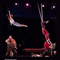 Lost in Translation Circus Trapeze Artist