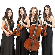 Palatine String Quartet / Trio / Duo Ensemble