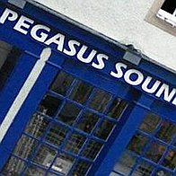 Pegasus Foam Machine