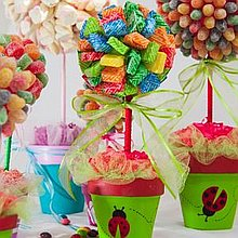 The Candy Surprise Wedding Catering