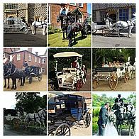 Snailriver Carriage Horses Transport