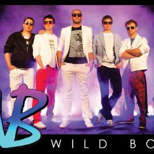 The Wild Boys Live music band
