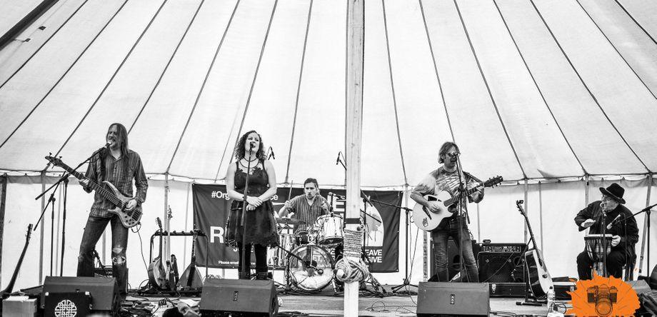 Treebeard - Live music band  - Sheffield - South Yorkshire photo