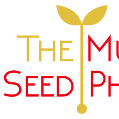 The Mustard Seed Photo Co Photo Booth