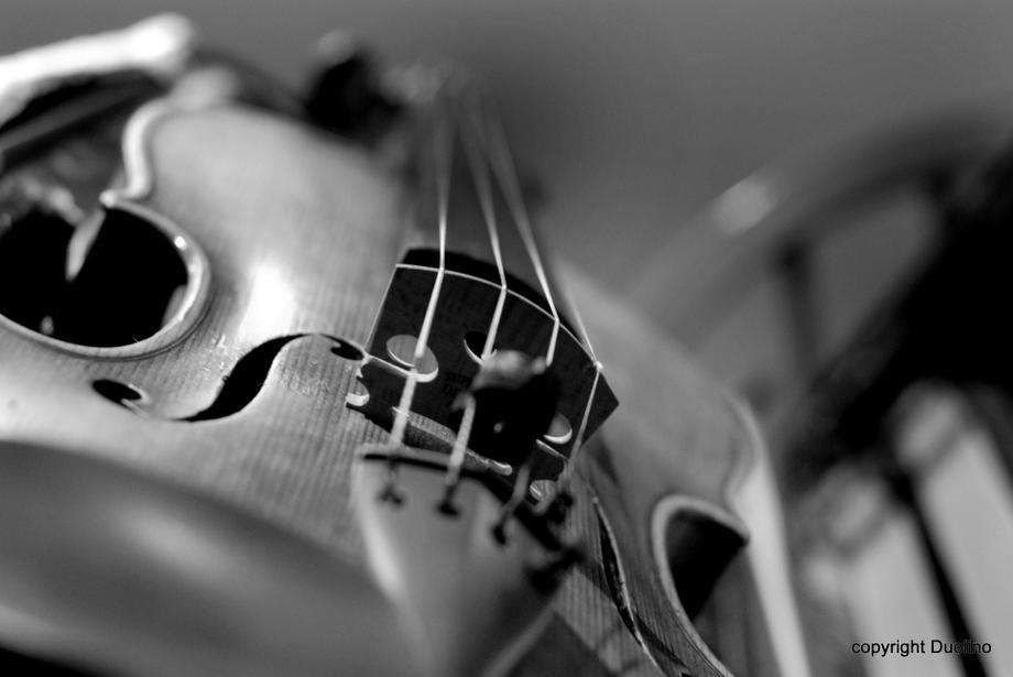 ASTARIA ENSEMBLE - Ensemble Solo Musician  - Birmingham - West Midlands photo