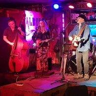 Bayston Hillbillies Folk Band
