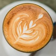 Barista Bus Coffee Bar