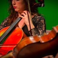 Musicians String Quartet