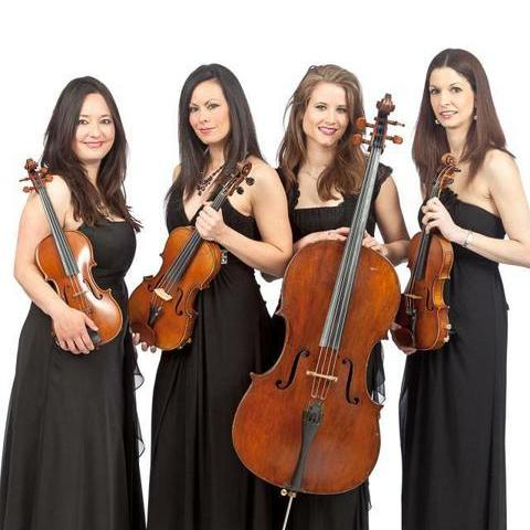 Palatine String Quartet - Ensemble , London, Solo Musician , London,  String Quartet, London Violinist, London Classical Ensemble, London