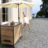 Rogue Artisan Ice Cream Ice Cream Cart