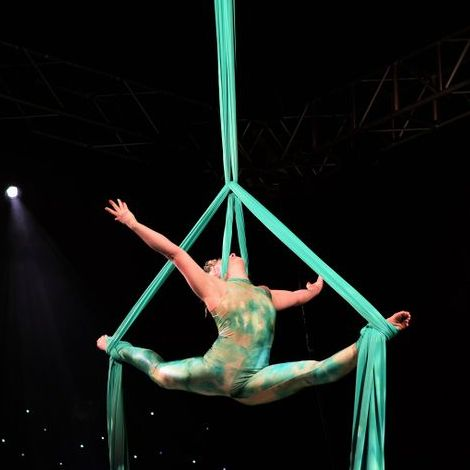 Fulcrum Circus - Circus Entertainment , Sheffield,  Stilt Walker, Sheffield Fire Eater, Sheffield Acrobat, Sheffield Aerialist, Sheffield Juggler, Sheffield Circus Entertainer, Sheffield Balancing Act, Sheffield Contortionist, Sheffield Trapeze Artist, Sheffield