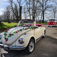 The Love Bug DG Vintage & Classic Wedding Car