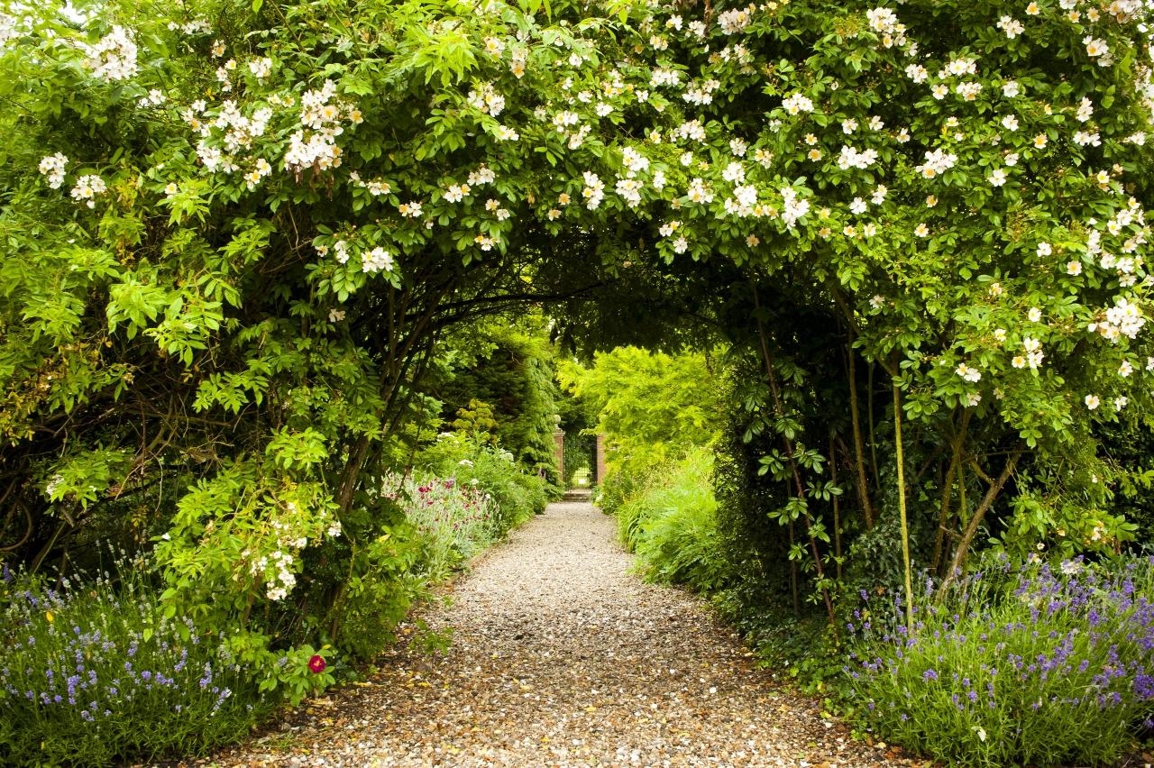 Secret Garden for hire